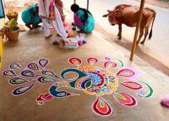Pongal – zimowy festiwal żniw
