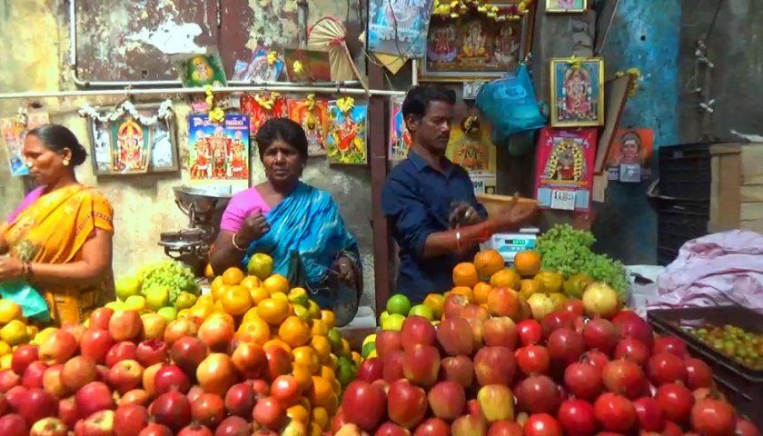 Tamilskie ujecia i portrety