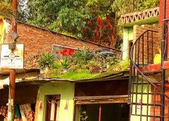 Baudha, Katmandu