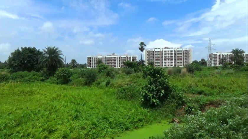 Puri: zamieszkaliśmy w Swan Regal