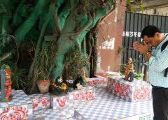 Kolkata holy tree
