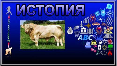 О священных коровах и золотом тельце