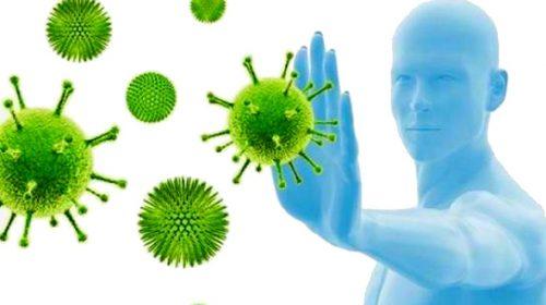 Думаешь, что знаешь, что такое иммунитет?