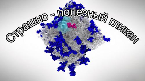 Вирусные метаморфозы: шипы заменяем на гликаны