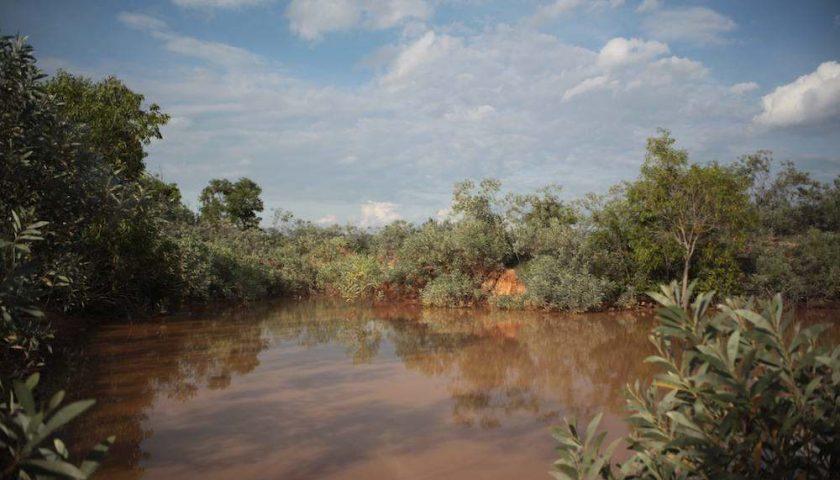 Auroville: Sadhana Forest