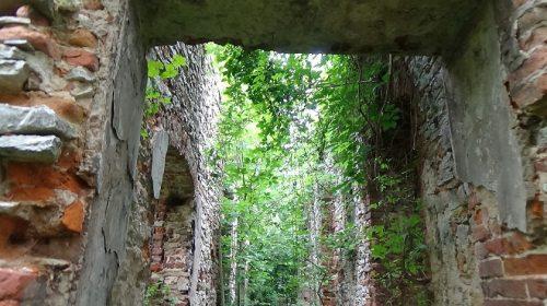 Ruiny dworu Szembeków