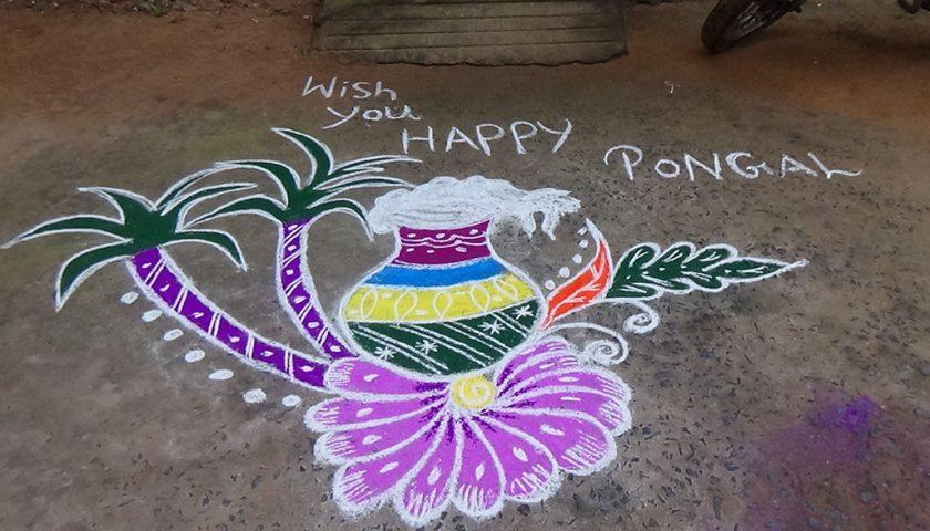 Pongal – harvest festival
