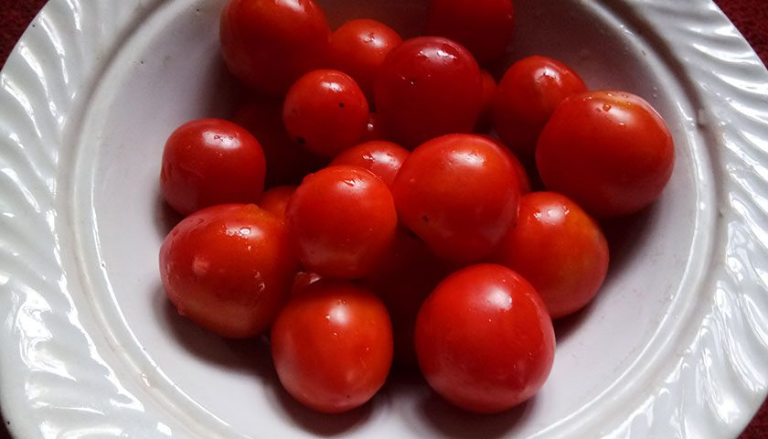 Nepal: Tomato consumption and funny facts